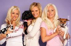 Las Chicas de La mansión Playboy y sus mascotas