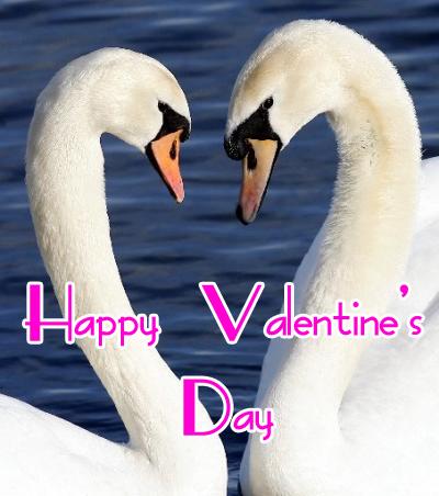 valentines-day-copia.jpg