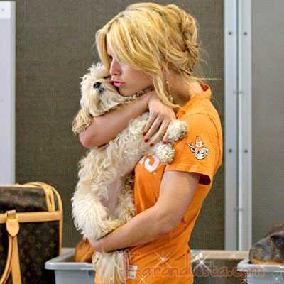 Jessica Simpson sigue con esperanzas y buscando a Daisy