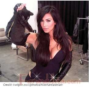Kim Kardashian: fotos con el gatito y en Harper's Bazaar