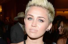 Miley Cyrus y Ed Westwick tienen un romance? NO!