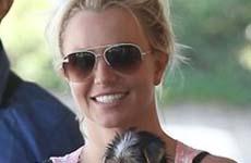 Britney Spears contrata un coach de canto para su regreso