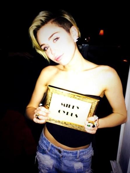 A Miley Cyrus no le importa que le llamen lesbiana pero si FEA!