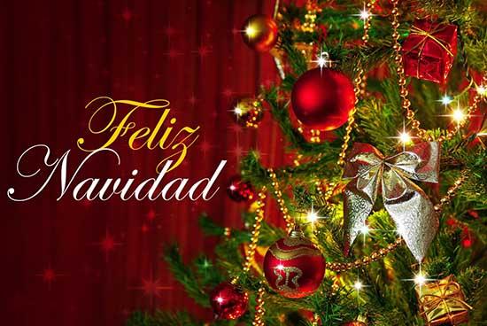 Feliz Navidad Farandulistas - Holy Gossip!
