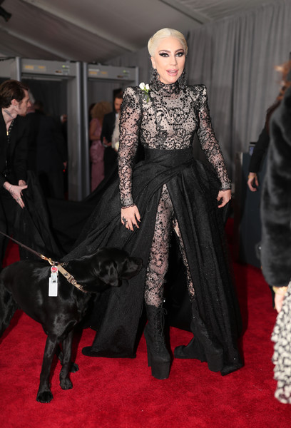 Lady Gaga se hizo cirugías plásticas para los Grammy?