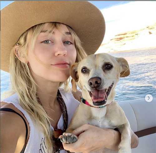 Miley Cyrus desea estar soltera tras la ruptura con Kaitlynn
