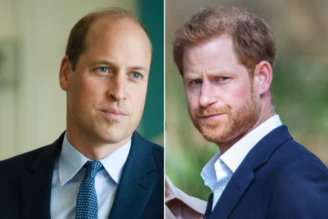 Battle of Brothers la batalla de William y Harry