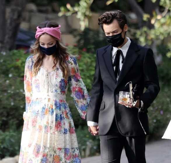 Harry Styles y Olivia Wilde son pareja!