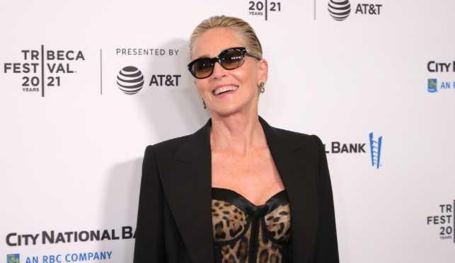Sharon Stone criticizes Meryl Streep