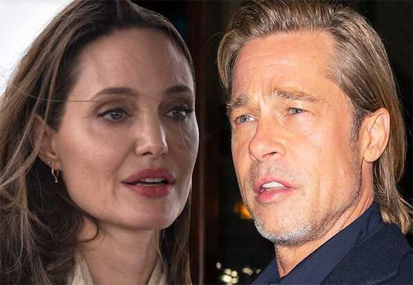 Angelina Jolie pide al juez que permita vender su viñedo con Brad