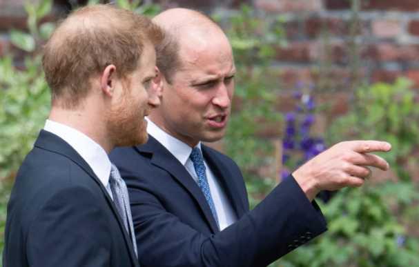 William y Harry reunidos en la inauguración de la estatua de Diana